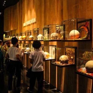 13. museu da cbf